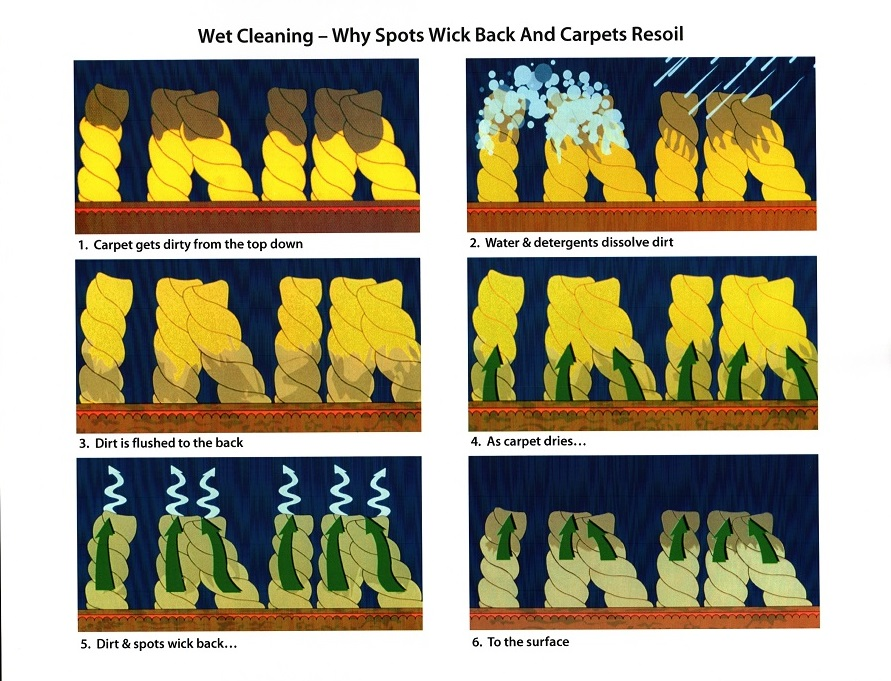 wet carpet cleaning process